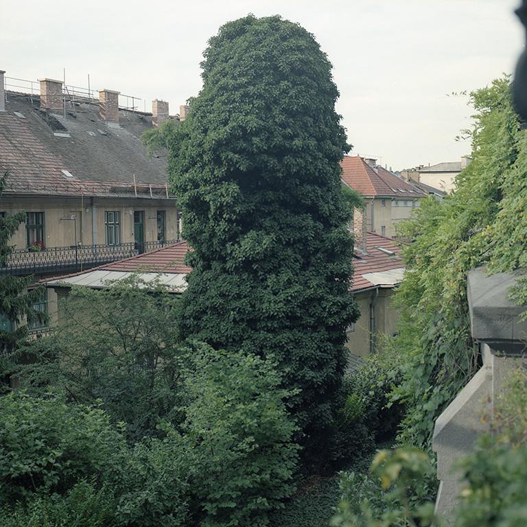 Budapeste_06_03